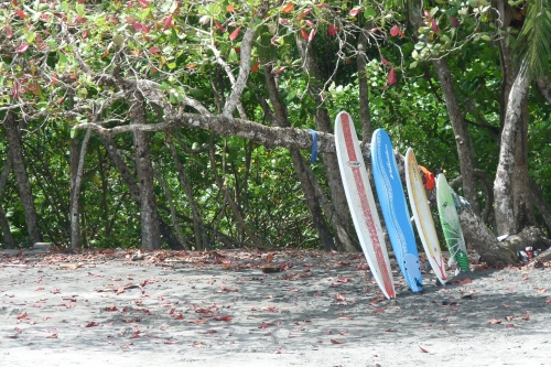 The Manuel Antonio beach was also popular with surfers.