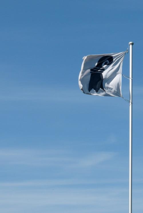 The regional flag of Basel
